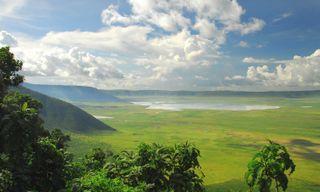 Luxury Northern Tanzania Safari