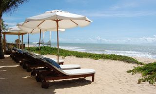 Luxury Brazil: Iguacu, the Pantanal, Rio and Trancoso