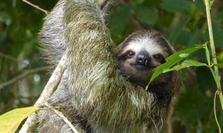 Family Adventure in Costa Rica