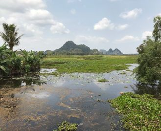 Highlights of Cambodia and Thailand's eastern Islands