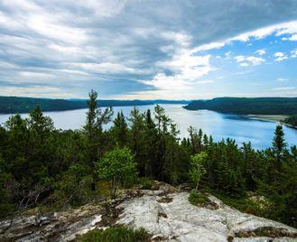Walking and Wildlife in Québec