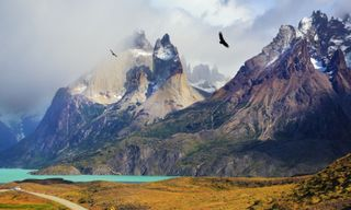 Patagonia North to South: Aisen and Torres Del Paine