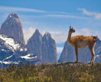 Chile & Argentina's Patagonian highlights