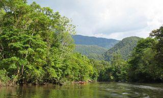 Grand tour of Borneo