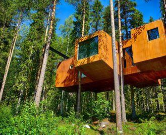 Under The Midnight Sun: Treehotel & Icehotel