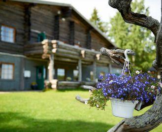 Summer Adventure In Swedish Lapland
