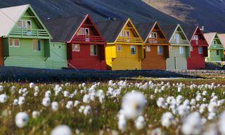 Svalbard Summer Adventure