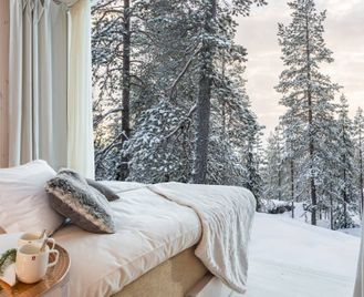 Winter Break At Arctic Treehouse Hotel