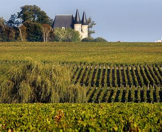 A Taste of Bordeaux Bike & Boat Tour