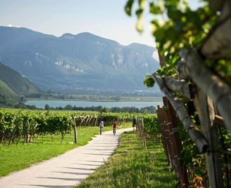 Sudtirol and The Dolomites to Lake Garda Self-Guided Cycling Tour