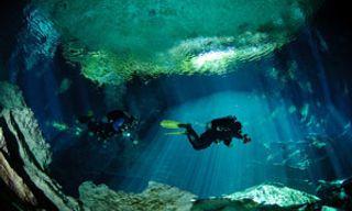 Cenotes & Reefs