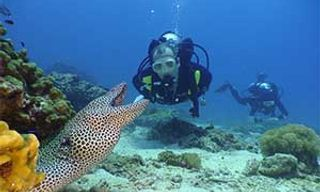 Learn To Dive Muscat