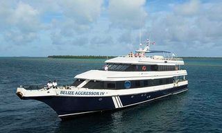 Belize Liveaboard