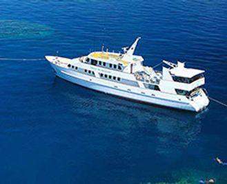 Great Barrier Reef & Coral Sea Safari