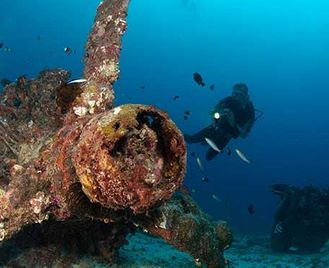 Dive & Discover Png