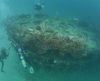 Dive Coron Bay