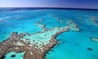 Queensland Dive Adventure