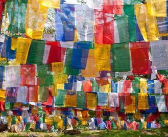 Bengal & Bhutan Explored