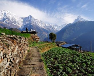 The Silk Road & Himalayan Explorer