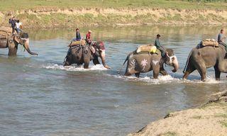 Nepal: Buddhism, Safari, And Outdoor Adventure