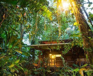 Costa Rica: Eco Itinerary