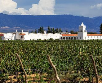 Argentina: The Famous Wine Route
