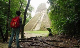 Guatemala: The Mayan Nature Tour