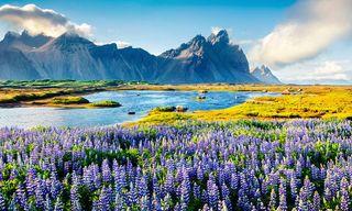 Iceland: Luxury Summer Escape
