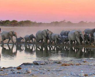 Namibia: Camping Road Trip Adventure