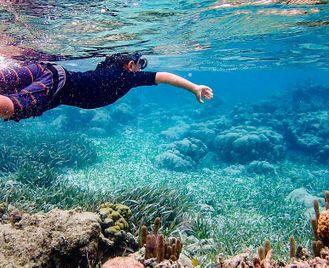 Belize: Nature Escape For Families