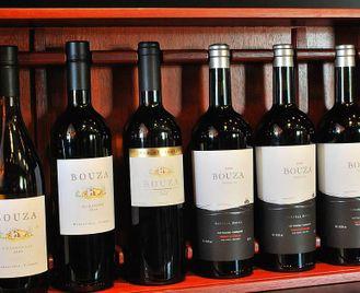Uruguay: Wine Route