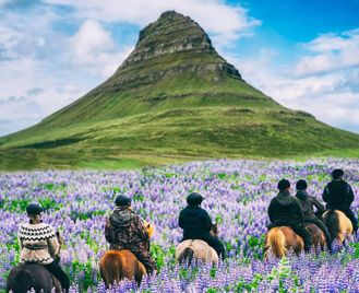 Iceland: Summer Road Trip For Families