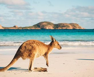 Australia: Beaches, Reefs And Cityscapes
