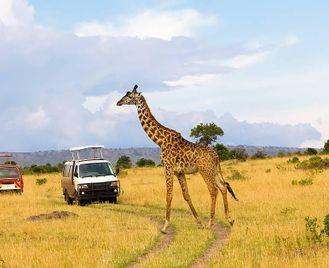 Kenya: Cultural Safari In Nairobi - Nyeri - Samburu - Masaai Mara
