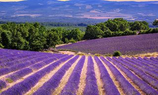 France: Heart Of Provence