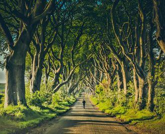Ireland: Game Of Thrones