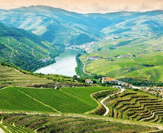 Portugal: Porto Wine And Douro Valley Vineyards