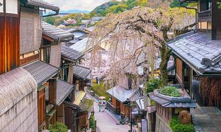 Japan: The Golden Route And Samurai Craft