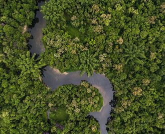 Colombia: Journey To Colombia's Amazon