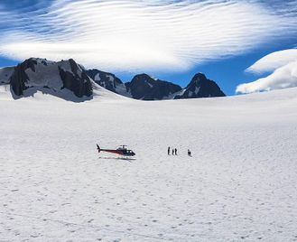New Zealand: Dolphins, Helicopters And Glaciers!