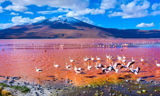 Bolivia: Andes, Salt Flats And Colonial Towns
