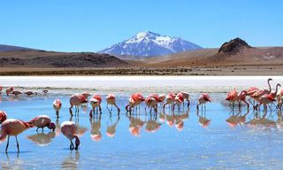 Bolivia: Off The Traveled Track