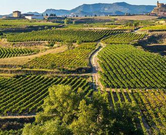 Spain: La Rioja, Cities And Wine Of Northern Spain