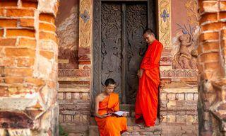 Nepal: Wildlife And Wellness Journey