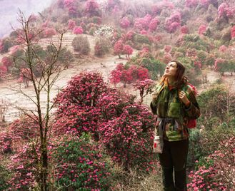 Nepal: Himalayan Soft Adventure