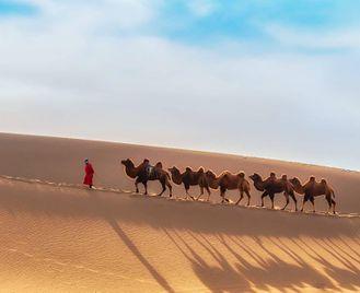 Mongolia: Highlights Of Mongolia