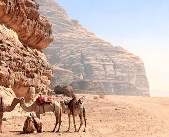 Jordan: Explore Dana, Azrak And Wadi Rum