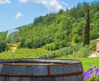 Croatia: Foodie Adventure With Wine Pairings