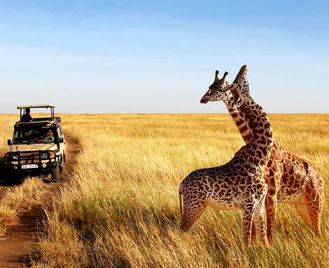 Tanzania: Road Trip In The South
