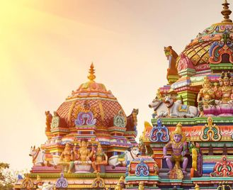 India: Culture And Nature In South India